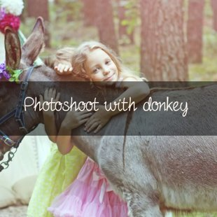Photoshoot with donkey