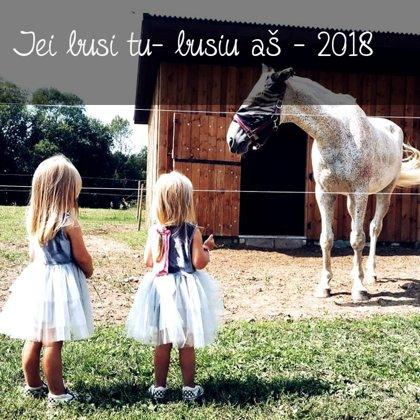 Jei būsi tu- būsiu aš. 2018